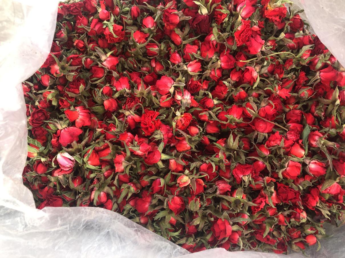گل ساناز خشک رنگی
